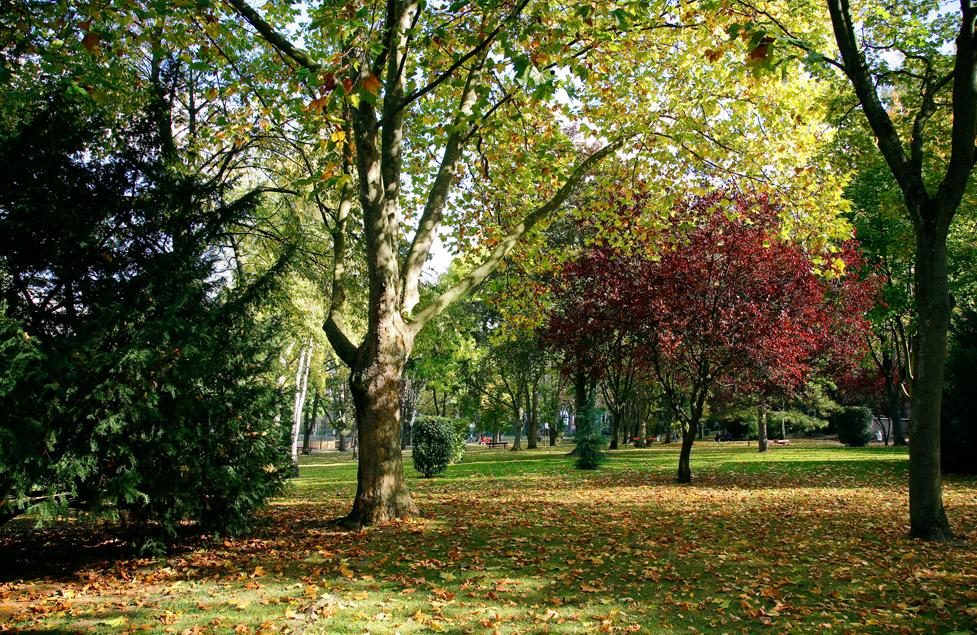Espace vert Issy-les-Moulineaux